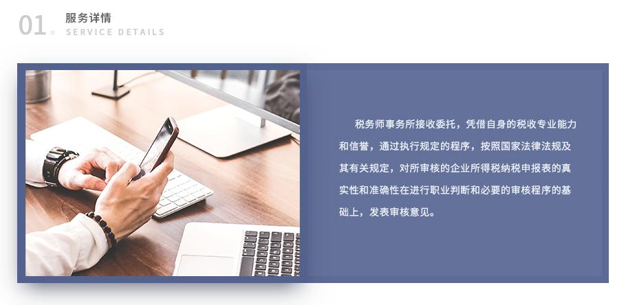 企业所得税年度纳税申报审核_03